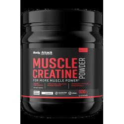 Muscle Creatine Powder (500g)